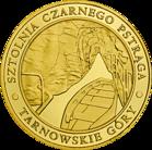 Front side Zabytkowa Kopalnia Srebra w Tarnowskich Górach Złote Śląskie