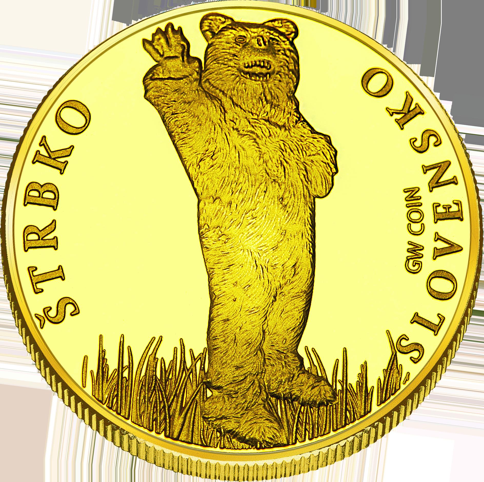 Back side of Štrbské Pleso Golden Slovakia