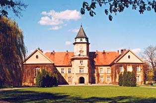 Zamek w Dzikowie